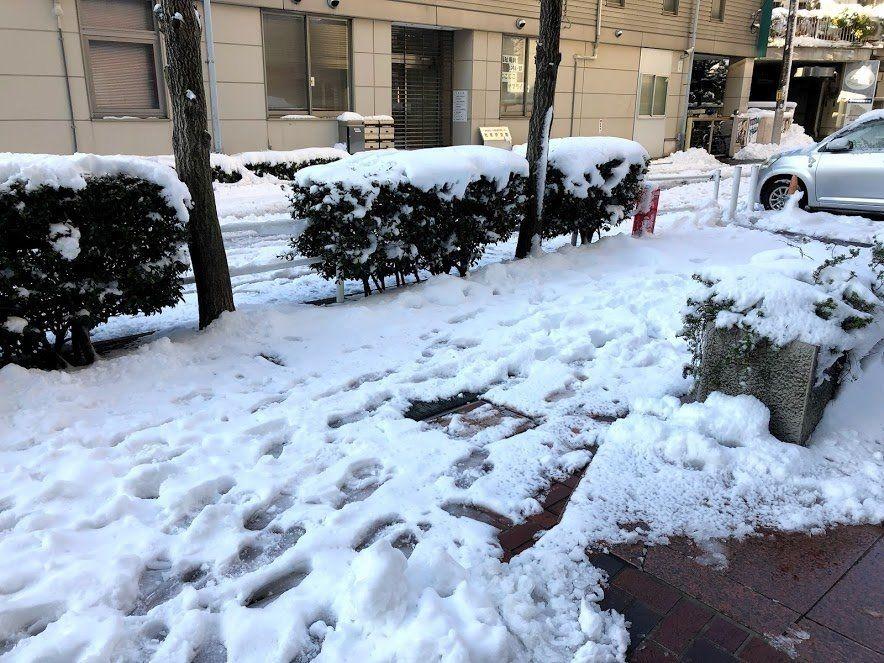 雪,賃貸管理