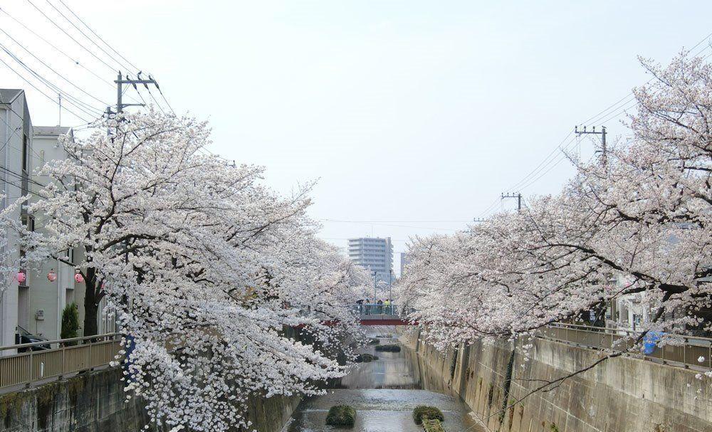 東武東上線「中板橋駅」