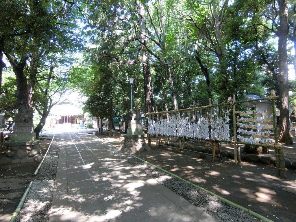 天祖神社(ときわ台)