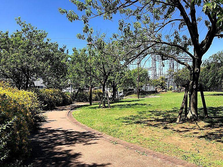 板橋区の公園の読み方を調べる方法