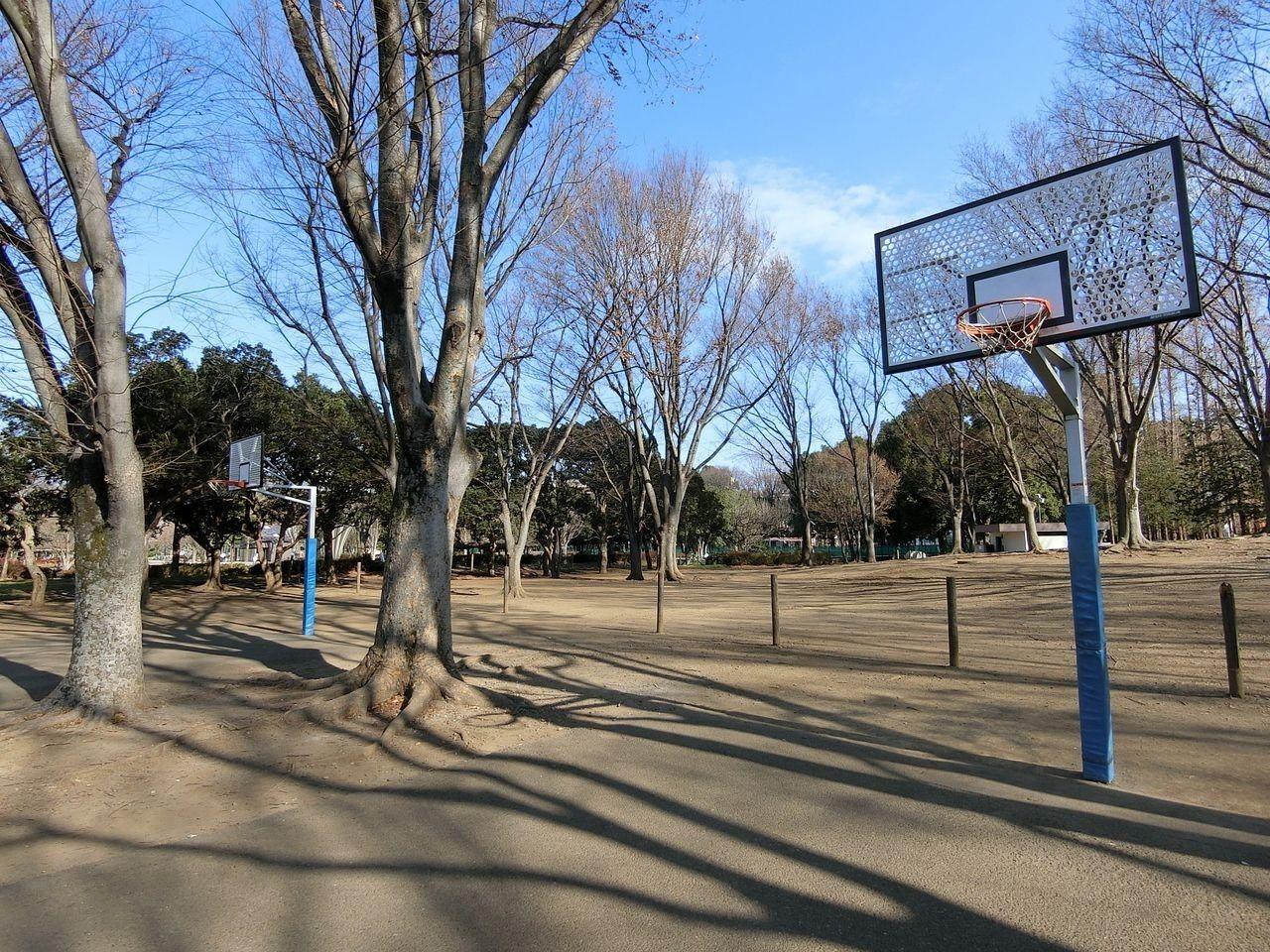 バスケットゴール(2ヶ所)